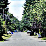 Wide residential street in Portland, Oregon, neighborhood; photo by Wayne Senville