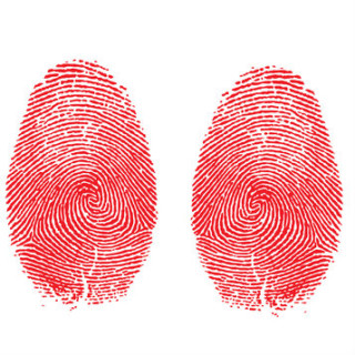 two fingerprints