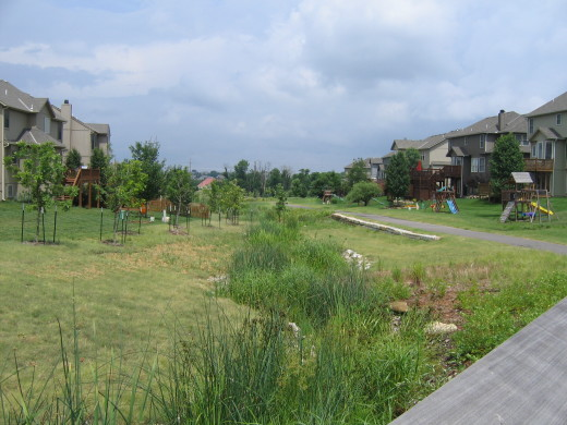 Natural stormwater management in residential development in Lenexa, Kansas.