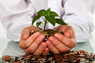 image of man holding tree sapling over a pile of coins