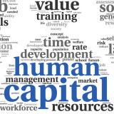 graphic that includes the words human capital