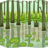 illustration of swamp and trees