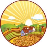 illustration of a house and farmland
