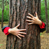 Woman wrapping her arms around a tree