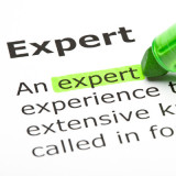 "crop of definition of ""expert"""