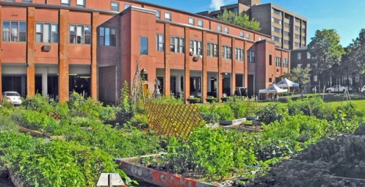 Housing and gardens at Billings Forge in Hartford