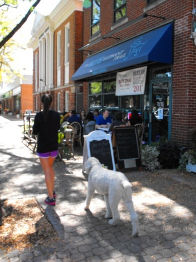 Brick pavers line sidewalks in West Hartford Center