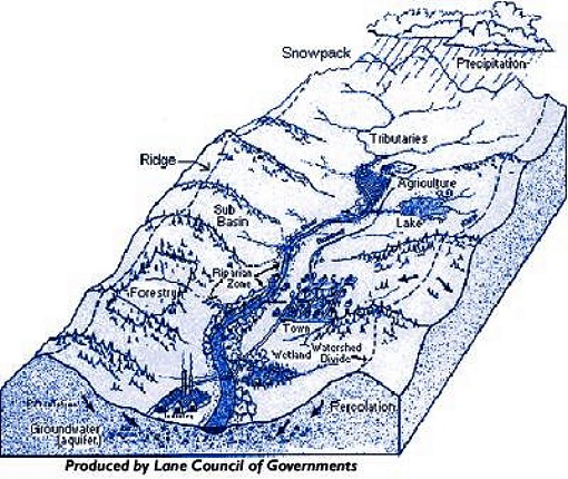 Watershed illustration (water.epa.gov)