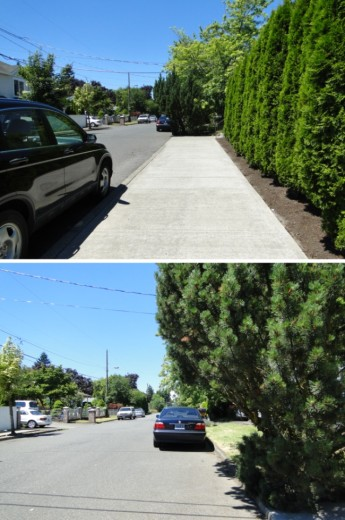 While Portland does build new sidewalks when there's new development, sometimes they just end mid-block. The bottom photo shows what I found after I walked around the large shrubs at the end of the sidewalk. Many of Portland's newer neighborhoods have only scattered stretches of sidewalk.
