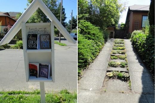 Walk3-books-and-driveway