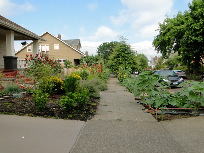 Residential Parkway Landscaping Ideas : On the verge in portland plannersweb