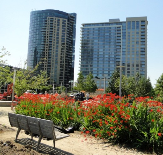 New development, and a new park, in Portland's South Waterfront District.