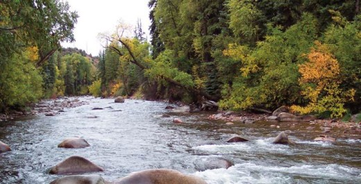 The Roaring Fork River. photo courtesy of Roaring Fork Conservancy.