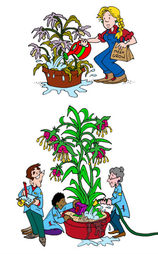 Illustration by Marc Hughes for PlannersWeb - watering exotics versus watering native species