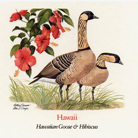 State flower of Hawaii; From The Wildflowers of the 50 States U.S. stamps issued July 24, 1992
